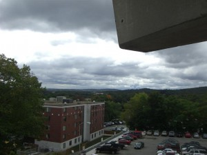 Spingold's View